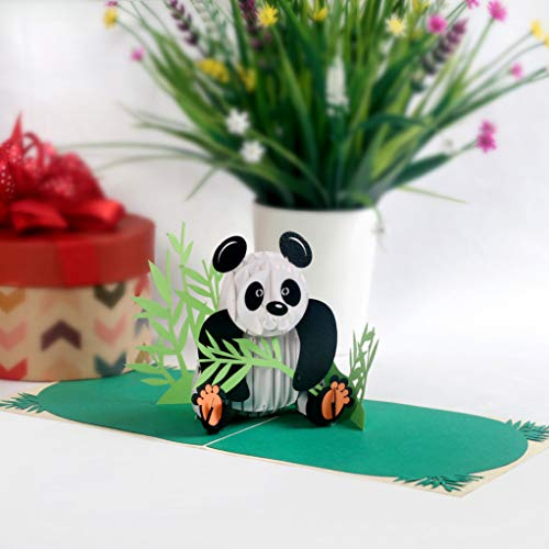 CUTPOPUP 3D Panda Paper Pop Up Greeting Card Cute Laser Cut Panda Animal Pop Out Card for Birthdays, Anniversaries, Mothers Day - Includes Envelope - Ideal Gift for Family, Friends, Colleagues