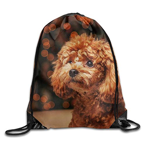 Uangdglu Drawstring Bag Sugar Skull Backpack Draw Cord Bag Sackpack Shoulder Bags Gym Bag Large Lightweight Gym For Men And Women Hiking Swimming Yoga Poodle Dog -