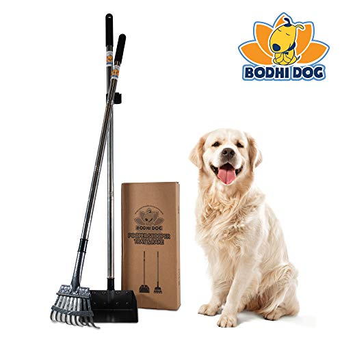 Bodhi Dog Metal Long Handle Tray and Rake Pooper Scooper | Perfect for Small, Medium, Large, XL Pets - Great for Grass, Street and Gravel
