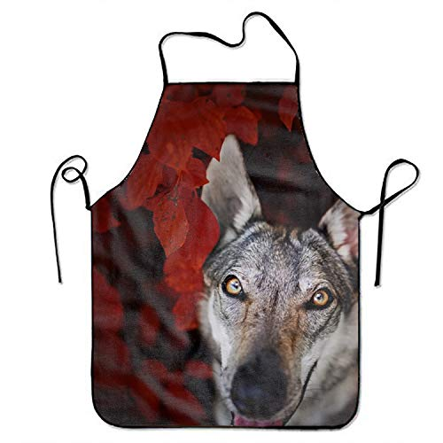 Starfactr Dog Apron Bib Save-All Chef Apron Tailgate Grilling Prepare for Family Man One Size Drill ()
