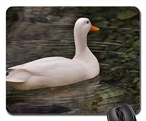 (Mouse Pad - Peking Duck White Mallard House Duck Animal)