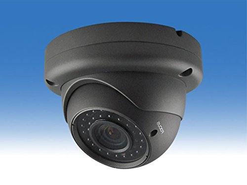 WTW-PDR344HE 220万画素 IPネットワーク 屋外赤外線ドームカメラ B01L49SLAG