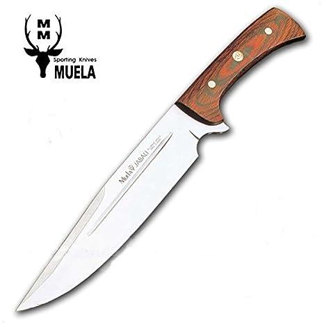 Amazon.com: Muela Knife Model JABALI 21E: Sports & Outdoors
