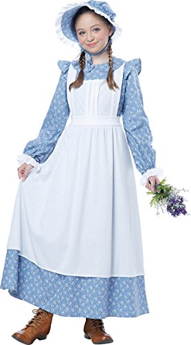 (California Costumes Pioneer Girl Child Costume, Blue,)