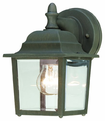 Thomas Lighting SL942263 Hawthorne Outdoor Wall Lantern, Painted Bronze