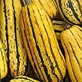 Delicata Winter Squash 40 Seeds - GARDEN FRESH PACK!