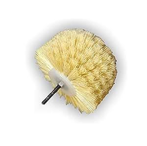 Cabeza Cepillo, cepillo de pulir beiz (Fibre de cerdas/para taladro)