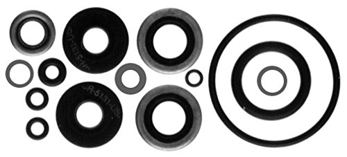 Sierra International 18-2656 Marine Lower Unit Seal Kit for Johnson/Evinrude Outboard - Johnson Seal Evinrude