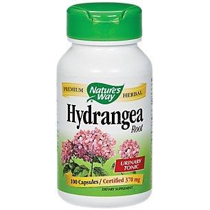 Nature's Way Hydrangea Root, 370 Milligrams, 100 Vegetarian Capsules. Pack of 1.