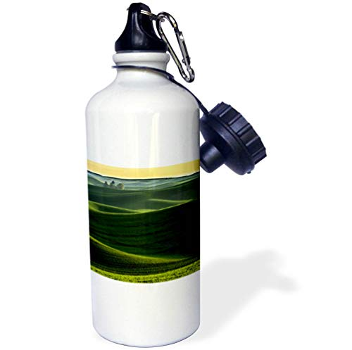 3dRose Danita Delimont - Farms - Rolling Hills Covered in Wheat, Palouse, Eastern Washington State. - 21 oz Sports Water Bottle (wb_315084_1)
