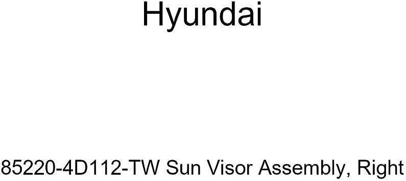 Genuine Hyundai 85220-4D112-TW Sun Visor Assembly Right