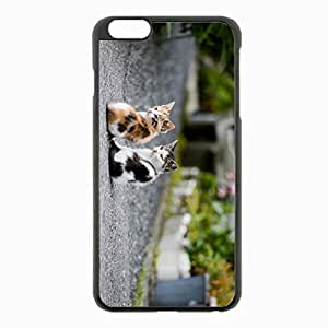 iPhone 6 Plus Black Hardshell Case 5.5inch - kittens couple sit Desin Images Protector Back Cover