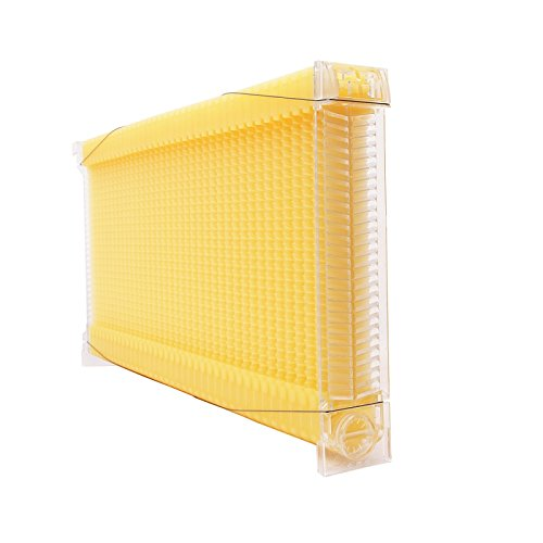 Changhe Automatic Flow Beehive 4pcs Honey Flow Frame Super Box Free Flow Frame (4 Flow Frame Set only) by Changhe (Image #3)