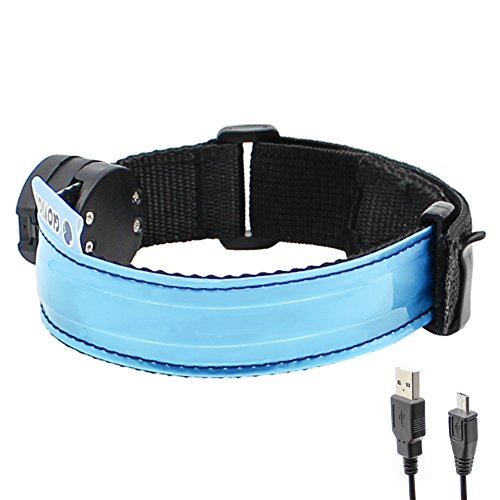 Glovion LED Armband - USB Rechargeable LED Running Armband Light- High Visibility Safety Gear for Night Running, Jogging & Cycling - Blue
