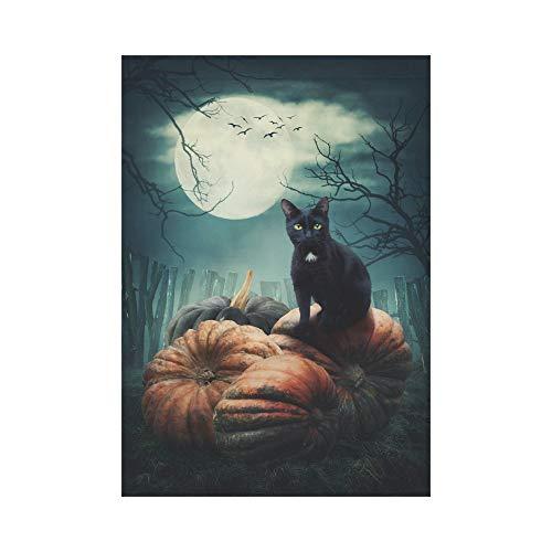 HUVATT Halloween Black Cat on a Pumpkin Polyester Garden Flag Outdoor Banner 28 x 40 inch, Dark Tree Full Moon Decorative Large House Flags for Party Yard Home Decor