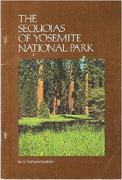 The Sequoias of Yosemite National Park
