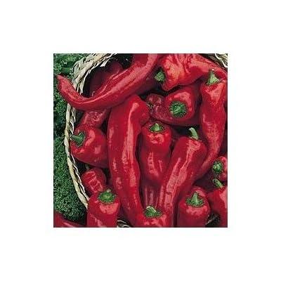 Melrose Heirloom Sweet Pepper 10+ Seeds : Chile Pepper Plants : Garden & Outdoor
