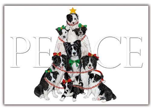Border Collie Christmas Cards : 10 Holiday Cards with Red Envelopes - ADORABLE! - Border Collies Gifts