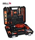 iBELL IBL TD13-100, 650 W Professional Tool Kit (Pack of 115)