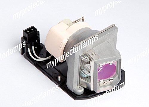 交換用プロジェクタ バルブ オプトマ BL-FU190E, SP.8VC01GC01 B01LKUW7UE