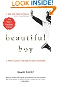 #8: Beautiful Boy: A Father's Journey Through His Son's Addiction