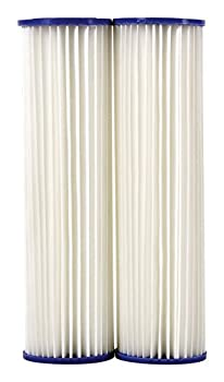 DuPont DUPONT-WFPFC3002 Two Count Universal House Pleated Poly Cartridge