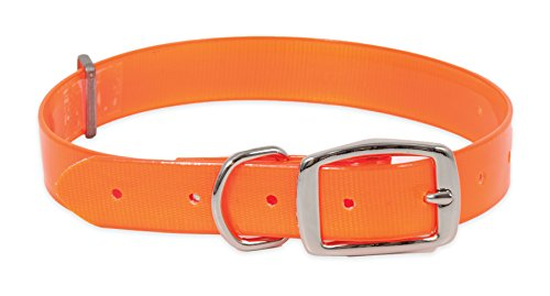 Petmate Aspen PET Products 10792 Flat Dog Collar, 1 by 20 to 28-Inch, Orange ()