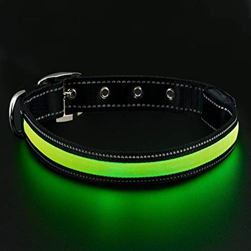 AeccnPets Collar USB Rechargeable Reflective Safety%EF%BC%88Green
