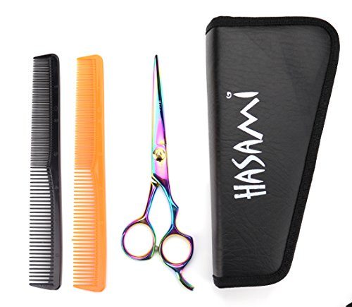 (Hasami Righty 6.0 Inches Shears Set. Titanium Finish. Scissors With Finger Rest. Japan Stainless Steel. Two Hair Combs and Case.)