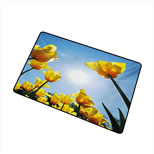 Entrance Door mat Yellow and Blue Tulip Flower Field Against The Sky Summer Blooming Petals Vibrant W16 xL20 Breathability ()