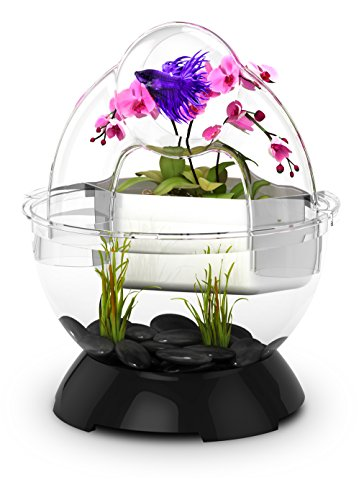 Bio-Bubble BioBubble Wonder Bubble Tunnel Kit, Black