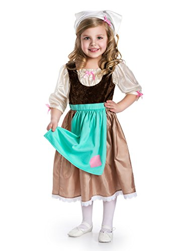 Cinderella Costume 2-3 - Little Adventures Traditional Cinderella Day Dress Girls Costume - Small (1-3 Yrs)
