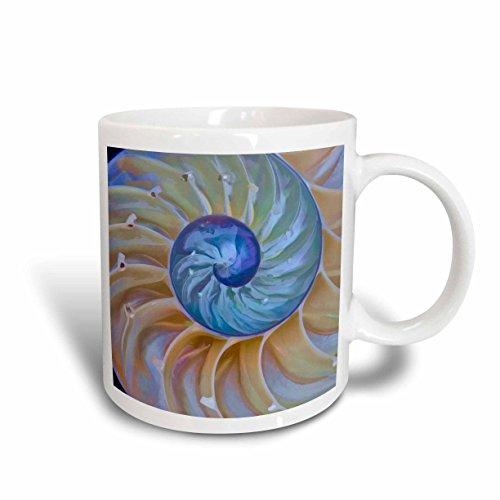 3dRose 190954_1 Usa Oregon Close-Up Of Chambered Nautilus Cut In Half Ceramic Mug, 11 oz, - Nautilus Chambered