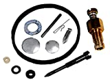 Carburetor Repair Kit / TECUMSEH/31840