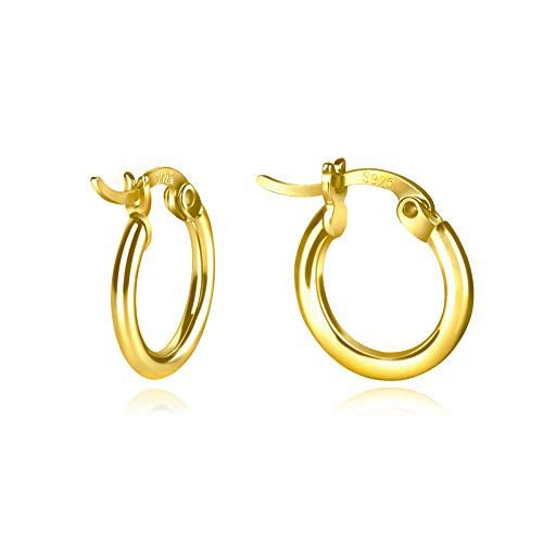 Gold Hoop Earrings ()
