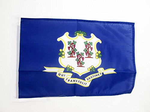 AZ FLAG Connecticut Flag 18'' x 12'' Cords - US State of Connecticut Small Flags 30 x 45cm - Banner 18x12 in