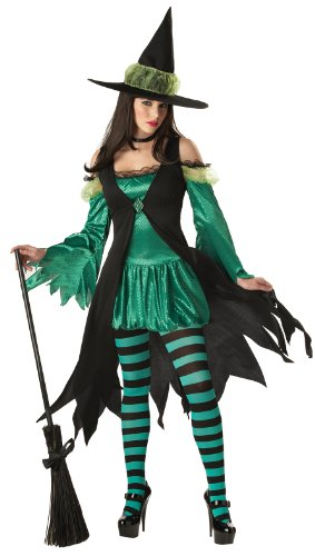 California Costumes Women's Emerald Witch Adult, Black/Green, (Bubble Witch Costume)