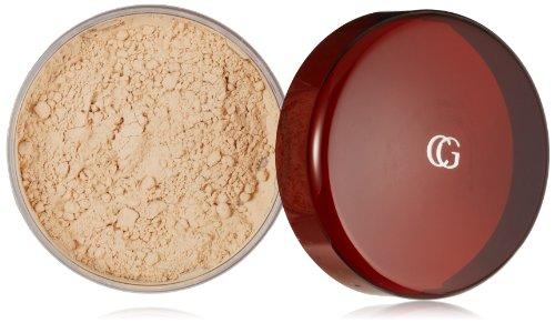 CoverGirl professionnel translucide Visage Poudre Libre Foire translucide (N) 105, 0,7 onces Shaker pot haut (pack de 2)