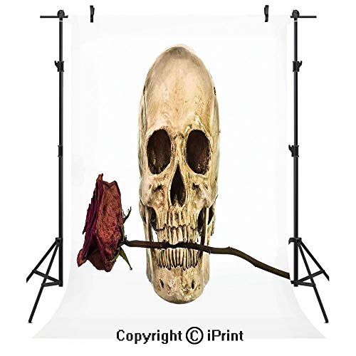Gothic Decor Photography Backdrops,Skull with Dry Red Rose in Teeth Anatomy Death Eye Socket Jawbone Halloween Art Decorative,Birthday Party Seamless Photo Studio Booth Background Banner 10x20ft,]()