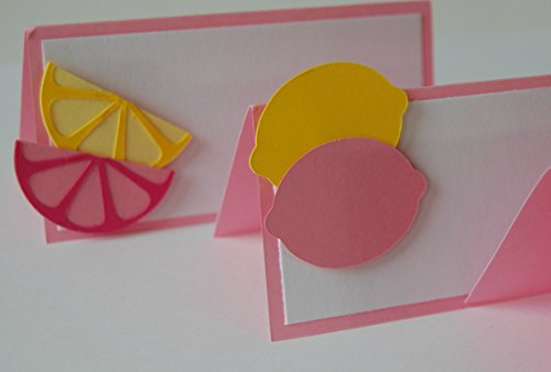 6 pieces, Pink Lemonade Birthday Party Name Tags