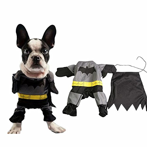 Pet Cat Dog Batman Costume