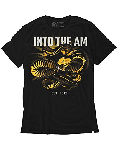 INTO THE AM Apophis Men's Graphic Tee Shirt ()