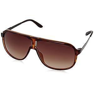 Carrera Men's New Safaris Aviator Sunglasses, Havana Brown & Brown Gradient, 62 mm