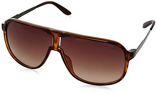 Carrera Men's New Safaris Aviator Sunglasses, Havana Brown & Brown Gradient, 62 - Glasses Safilo