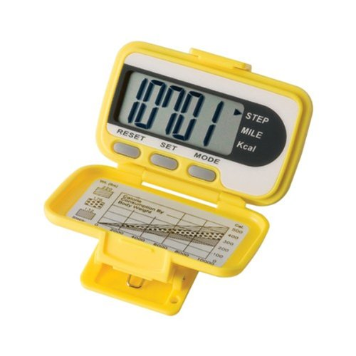 32-Pc Bee-Fit Busy Bee Pedometer Class Pack by Ekho