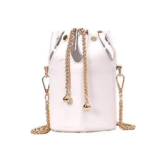 DZTZ Women's Fashion Transparent Chain Bag Patchwork Package Chain Bucket Bag (White)
