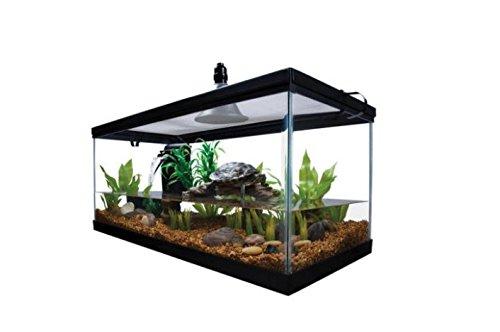 water turtle habitat kit - 7