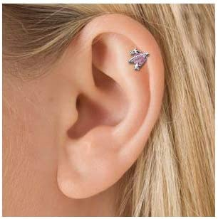 OUFER 16G 316L Surgical Steel Cartilage Earring Studs Star Moon Pink Stone Helix