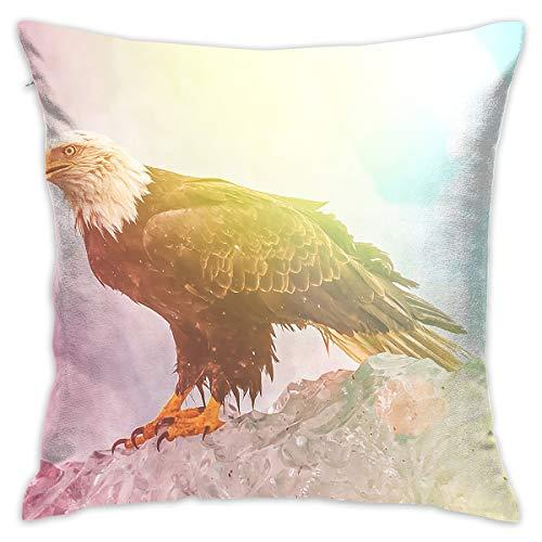 Karen Felix Throw Pillow Covers Color Wildlife Bald Eagle Decorative Cushion Case for Sofa Bedroom Car 18 X 18 Inch 45 X 45 cm