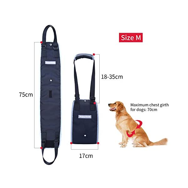 Support-Harness-Padded-Reflective-Straps